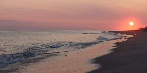 15 Best East Coast Beaches Amazing Beaches To Visit On The East