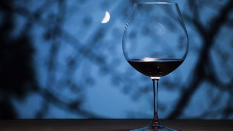 Wine glass, Stemware, Glass, Drinkware, Snifter, Champagne stemware, Water, Still life photography, Drink, Sky,