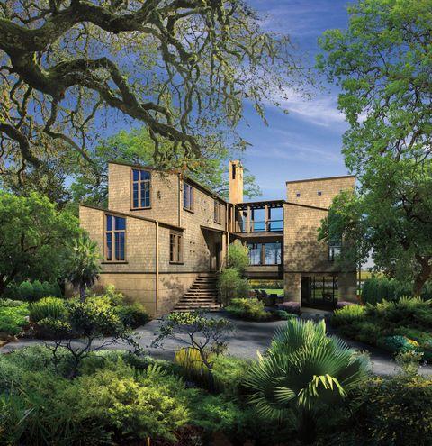 Plant, Neighbourhood, Residential area, Garden, Building, House, Real estate, Home, Shrub, Backyard,