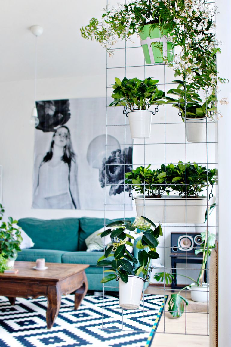 11 Indoor Flower Boxes That Will Convince You to Bring the Outdoors ...