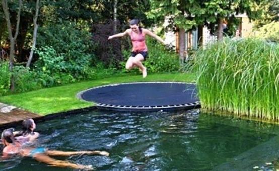 in ground trampoline. In Ground Trampoline D