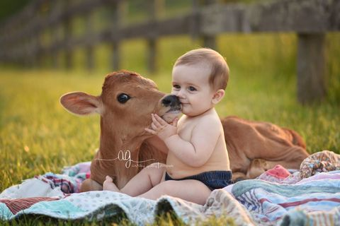 Ear, Human, Skin, People in nature, Child, Baby & toddler clothing, Toddler, Fawn, Baby, Love,