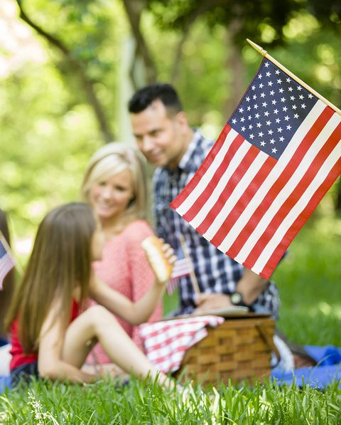 fourth of july picnic being enjoyed by a family
