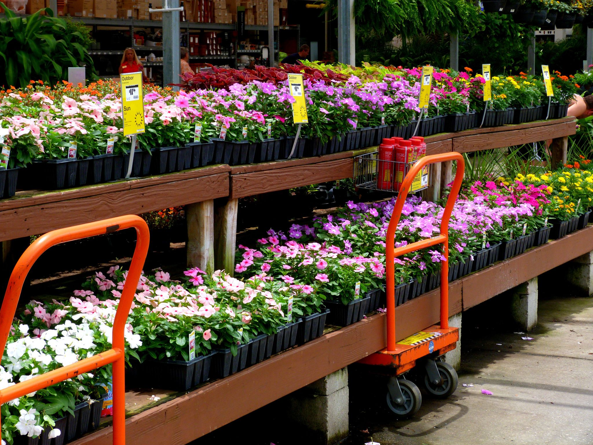 The Best The Home Depot Shopping Hack Revealed The Home Depot