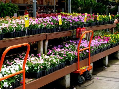 The Best The Home Depot Shopping Hack Revealed The Home