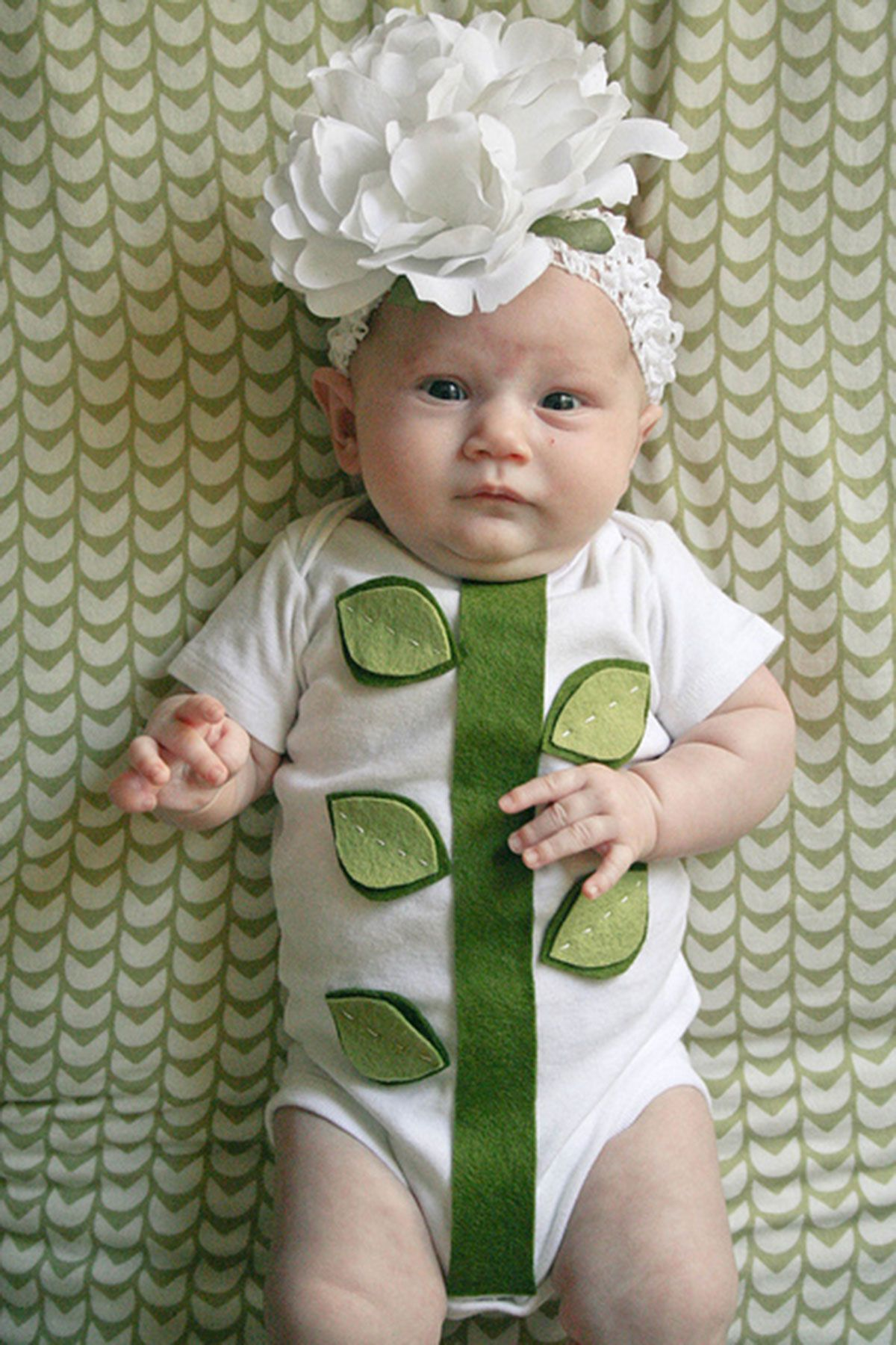 30 Best Baby Costume Ideas For 2019 Diy Baby Halloween
