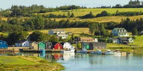 Plant, Landscape, Tree, House, Rural area, Land lot, Bank, Farm, Home, Watercourse,