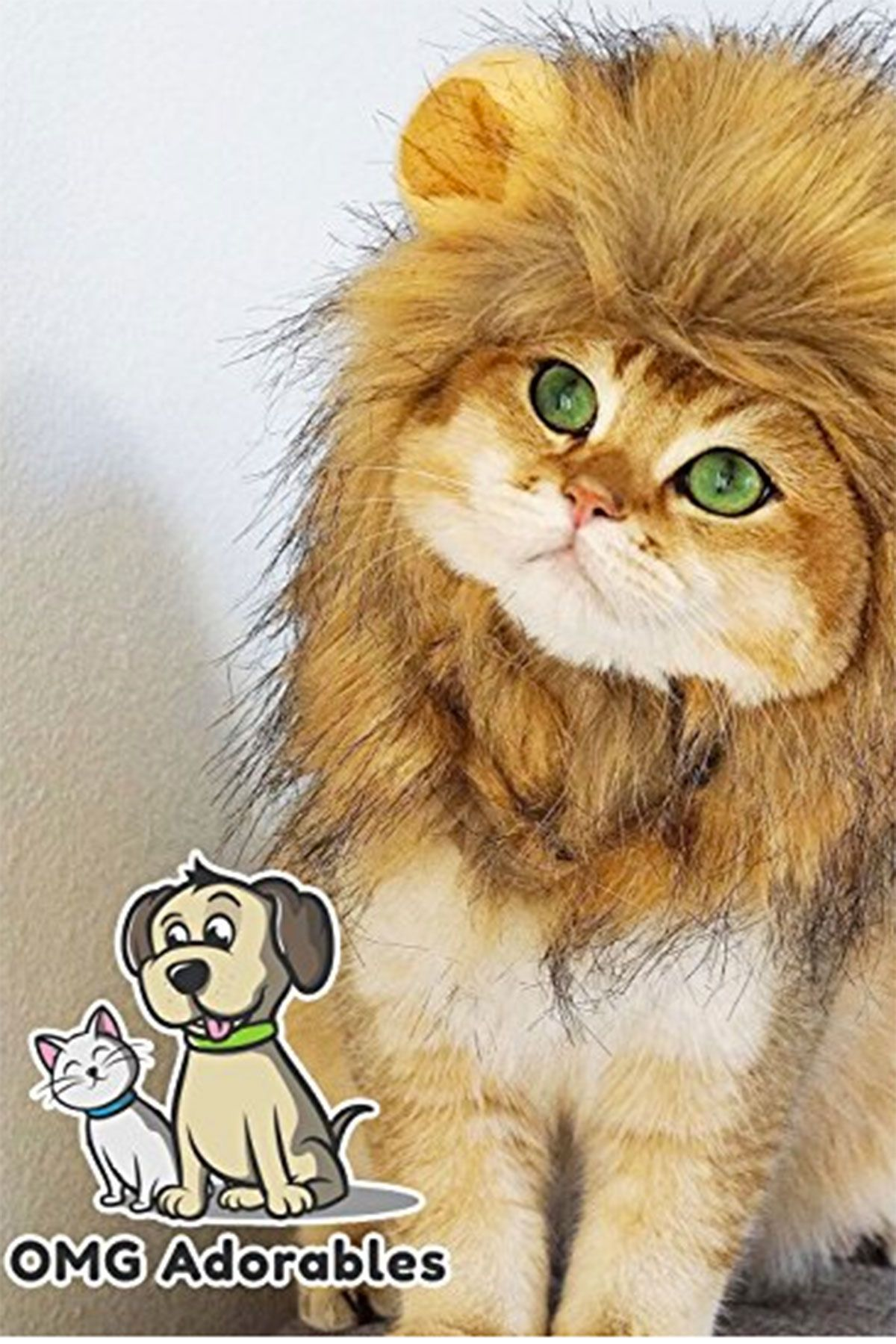 32 cute pet costumes for dogs & cats - best halloween pet costume ideas