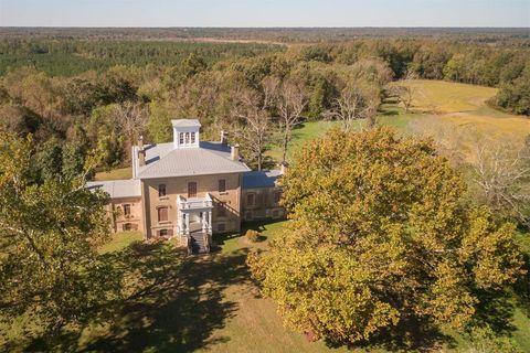 Property, House, Home, Natural landscape, Tree, Real estate, Estate, Rural area, Farm, Landscape,