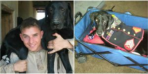 Marine's Bucket list for dying combat dog is heartbreaking