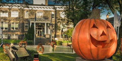 Pumpkin, Home, Calabaza, Orange, Grass, Cucurbita, Plant, Real estate, Yard, Estate,
