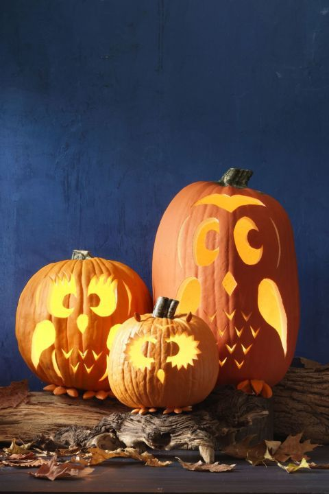 Owl Pumpkin Carving Ideas