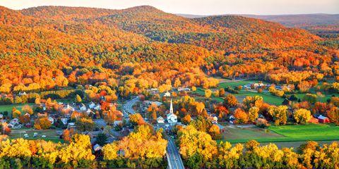 Nature, Natural landscape, Autumn, Leaf, Tree, Sky, Yellow, Plant, Landscape, Spring,