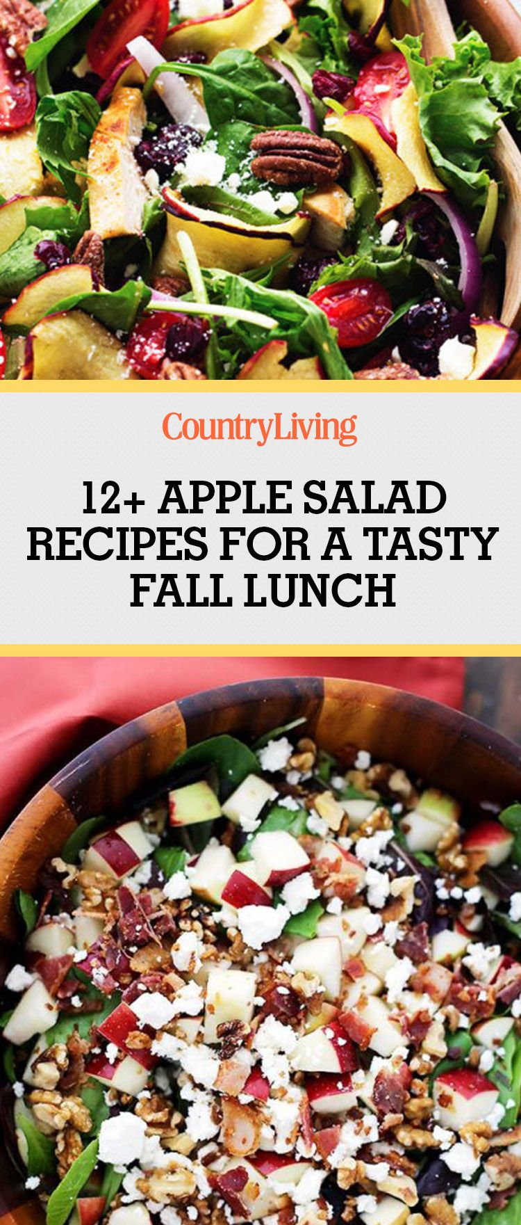 16 Best Apple Salad Recipes - Easy Fall Salads with Apples