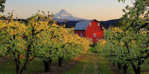 best small towns in oregon