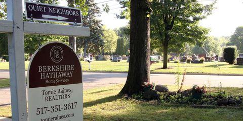 Tree, Grass, State park, Land lot, Lawn, Park, Plant, Signage, Real estate, Landscape,