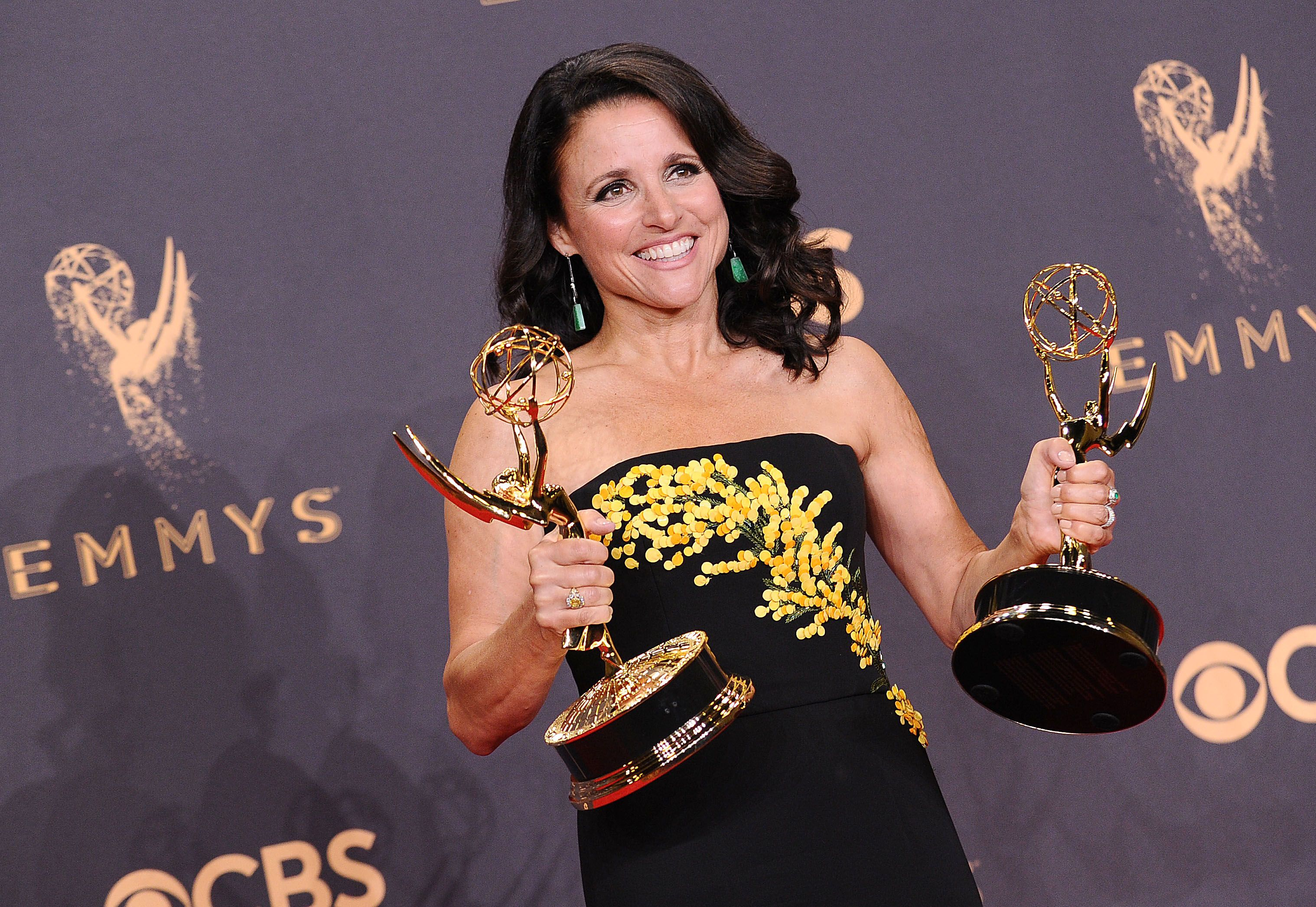 Image result for Julia Louis-Dreyfus friends