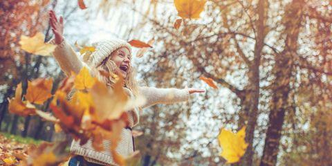 Leaf, Yellow, Orange, Tree, Autumn, Spring, Branch, Fun, Plant, Happy,