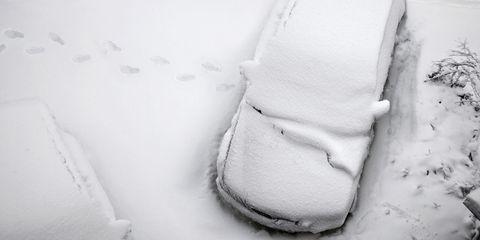 White, Footwear, Snow, Winter, Fur, Black-and-white, Shoe, Freezing,