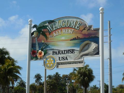 Advertising, Billboard, Signage, Vacation, Plant, Amusement park, Palm tree, Arecales, Tourist attraction, Tourism,