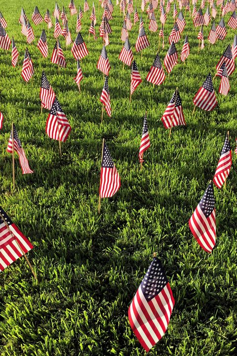 Flag, Flag of the united states, Grass, Pattern, Flag Day (USA), Plant, Memorial day, Groundcover, Holiday,