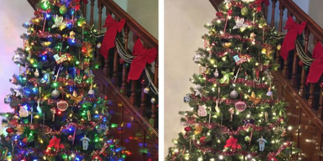 Color,Changing Christmas Trees Alternate Between White or