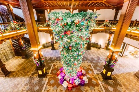 Interior design, Room, Tree, Flower, Lobby, Function hall, Plant, Building, Architecture, Floristry,