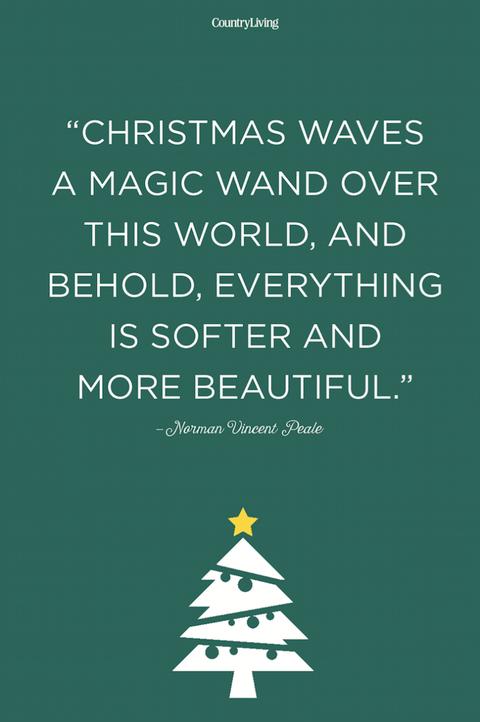 Text, Green, Font, Line, Christmas tree, Organism, Christmas eve, Tree, Illustration,