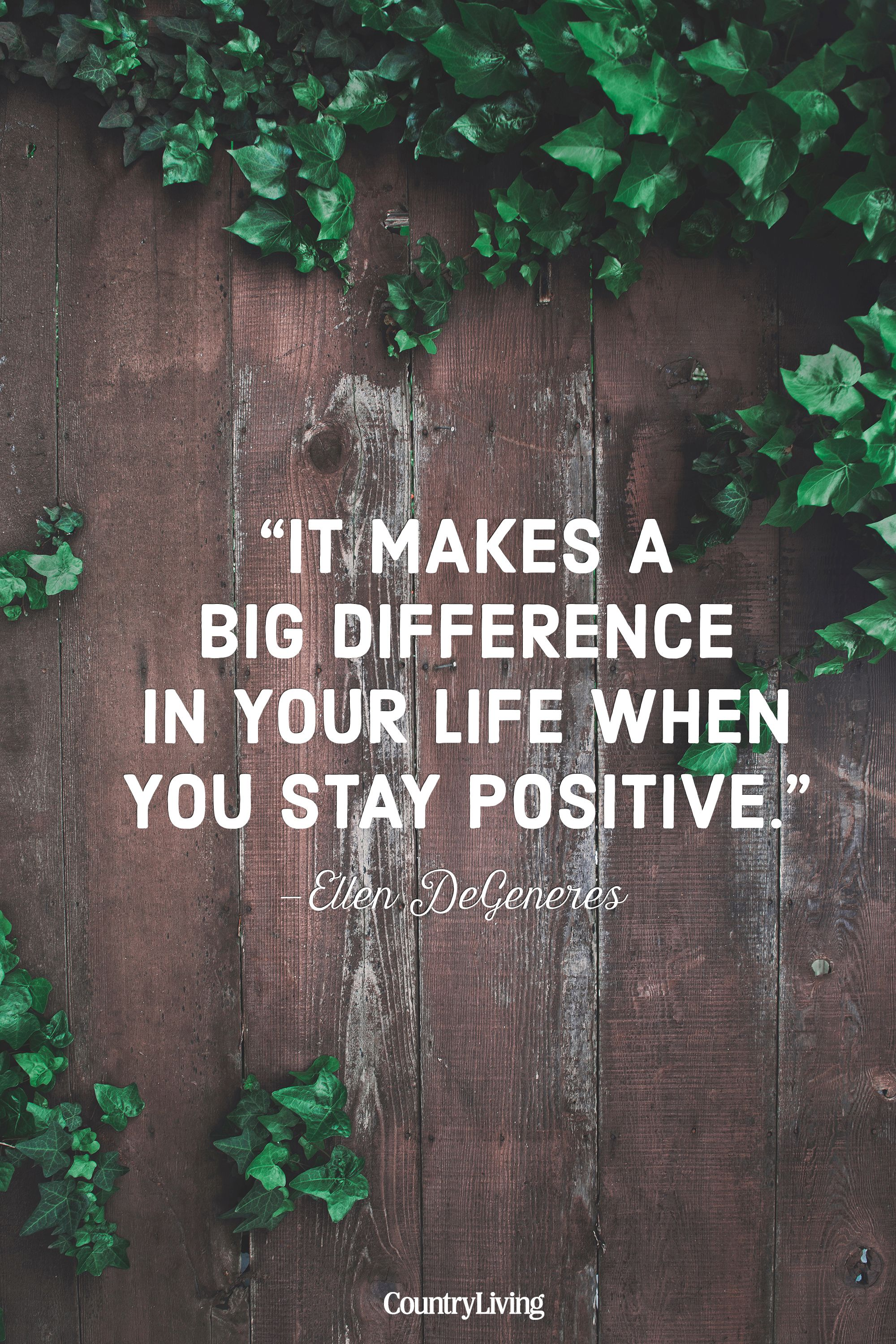 20 Best Positive Life Quotes   Quotes and Sayings About Positivity