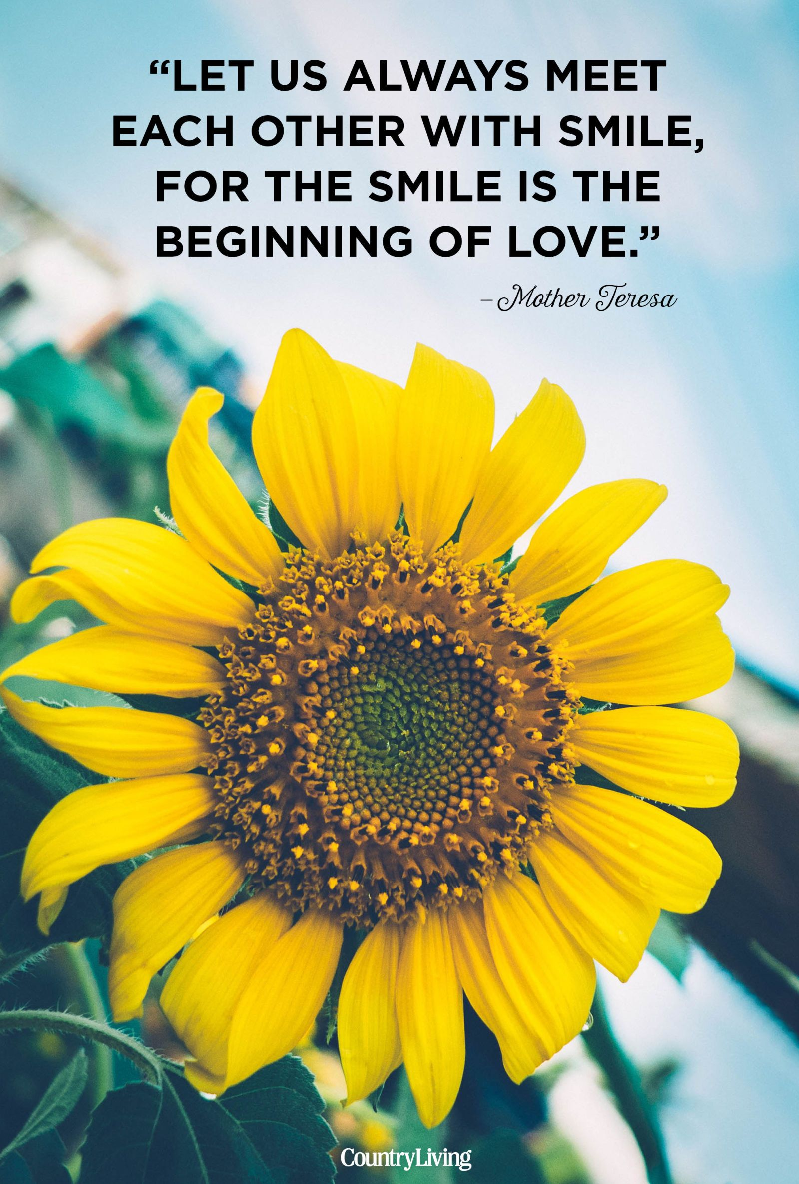 Image of: Benefit Fromit 12 Cute Quotes About Love You Need To Bookmark Country Living Magazine 12 Cute Love Quotes For Him And Her Short Relationship Quotes For