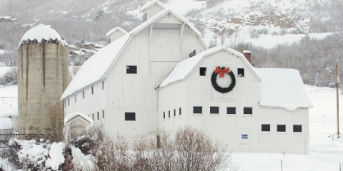 Snow, Winter, House, Barn, Building, Architecture, Roof, Home, Freezing, Sugar house,