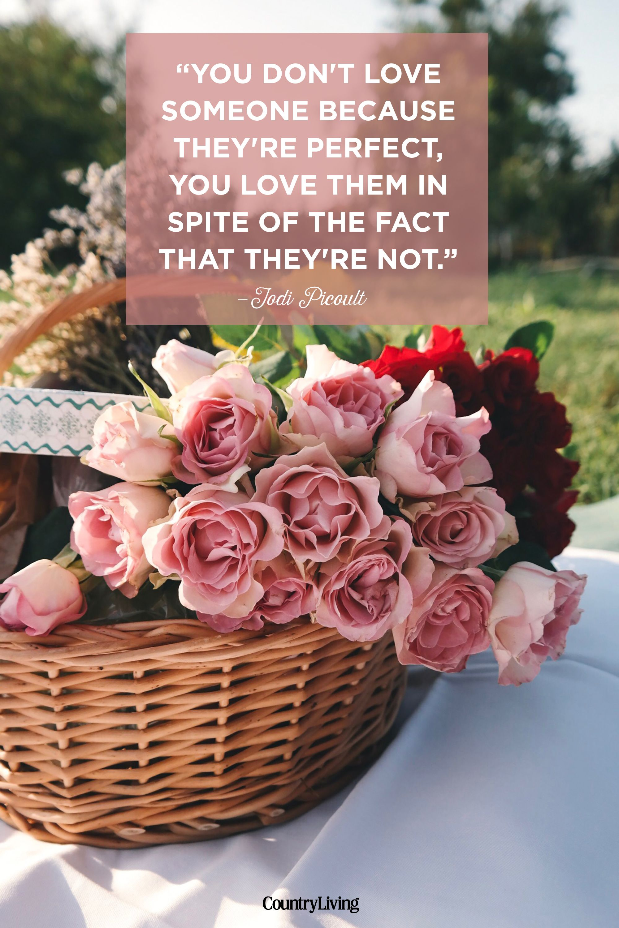 25 Romantic Valentine S Day Quotes Cute Quotes About Relationships