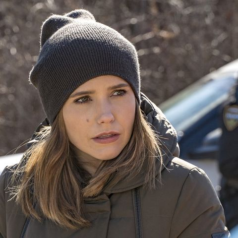 Chicago P D Actress Sophia Bush Was Cast In A New Medical Drama