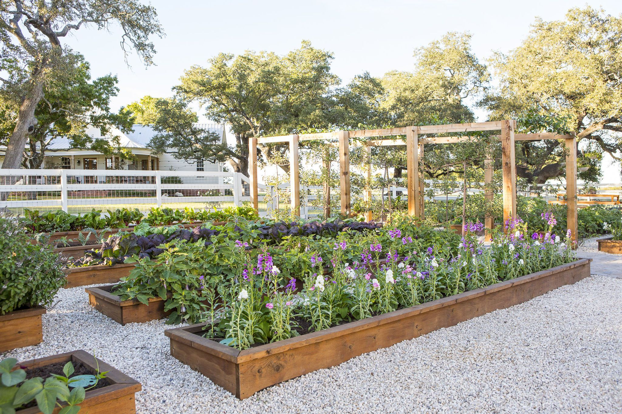 Chip Joanna Gaines Family Garden Project