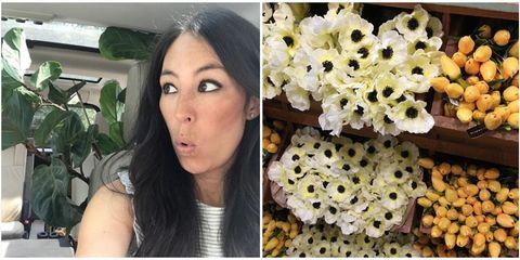 joanna gaines fake flowers