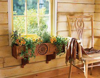 interior flower box with yellow zinnias