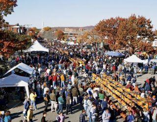 hundreds of festival attendees