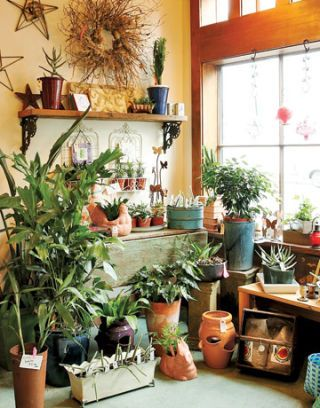 interior of pistils nursery