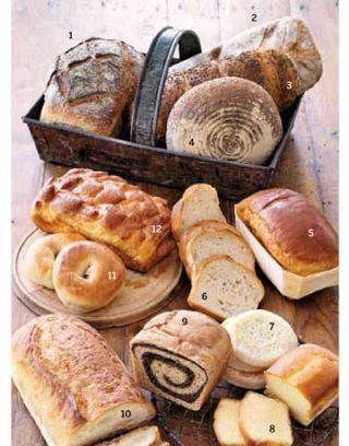 variety of different types of bread