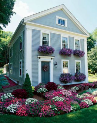 house with window boxes