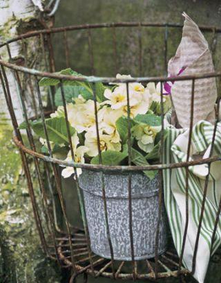 yellow flowers inside basket