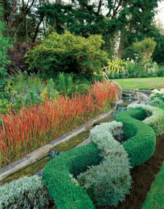garden with braided bushes