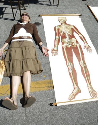 skeleton educational chart and monica michael willis