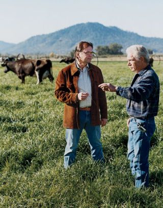 two men talking in a field with cows