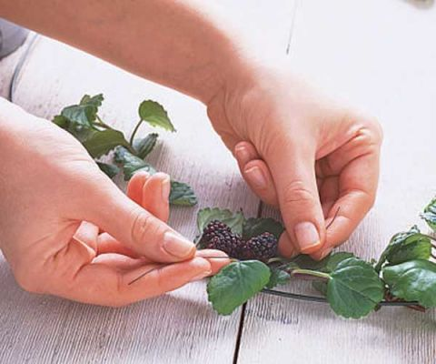 hands wrapping wire around berries and leaves
