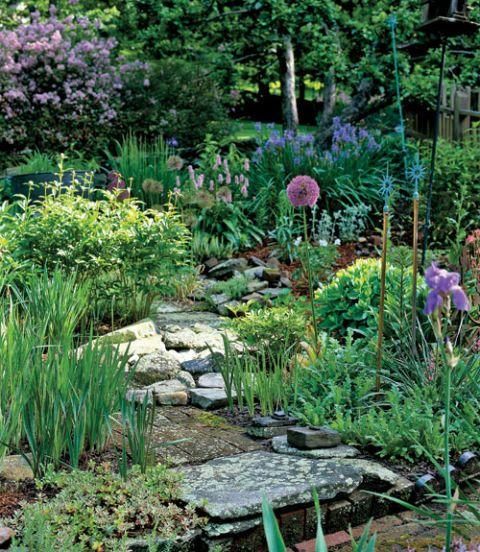 Stone walkways in the garden