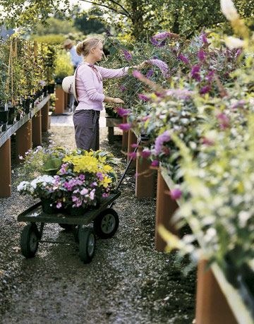 woman at plant nursery