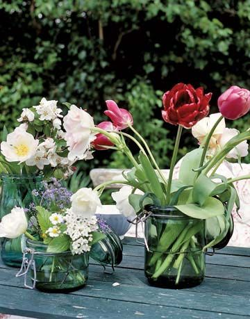 tulips in three vases