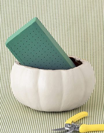 green sponge in a ceramic white pumpkin base