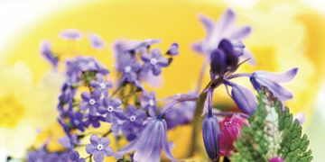 yellow flower pot with purple flowers